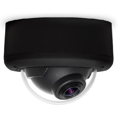 Arecont Vision AV3146DN-3310-D