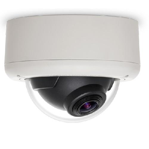 Arecont Vision AV3145DN-3310-D-LG